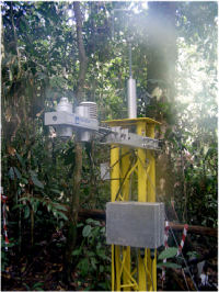 Measurement aparatus set up in a forest canopy