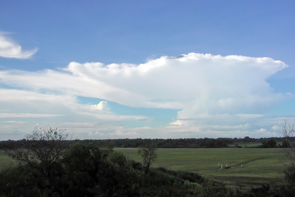 A deep convective Hector storm in the Darwin area of the type studied during the ACTIVE project. To give a sense of scale, this storm system is over the Tiwi Islands, and is approximately 80Km away from where the photograph was taken.