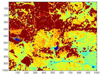 Figure 2. NDVI derived from hyperspectral IKONOS data for a grassland/forest site.