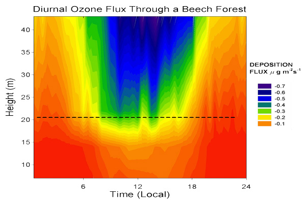 Fig 1. Diurnal Ozone flux measured within and above a Beech forest.