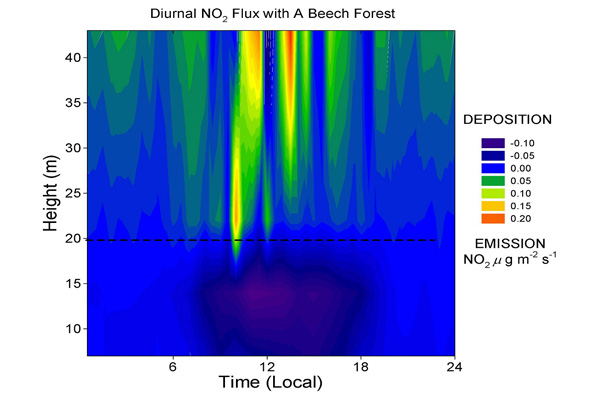 Fig 2. Diurnal NO2 flux measured within and above a Beech forest.