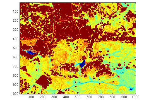 Fig 2. NDVI derived from hyperspectral IKONOS data for a grassland/forest site.